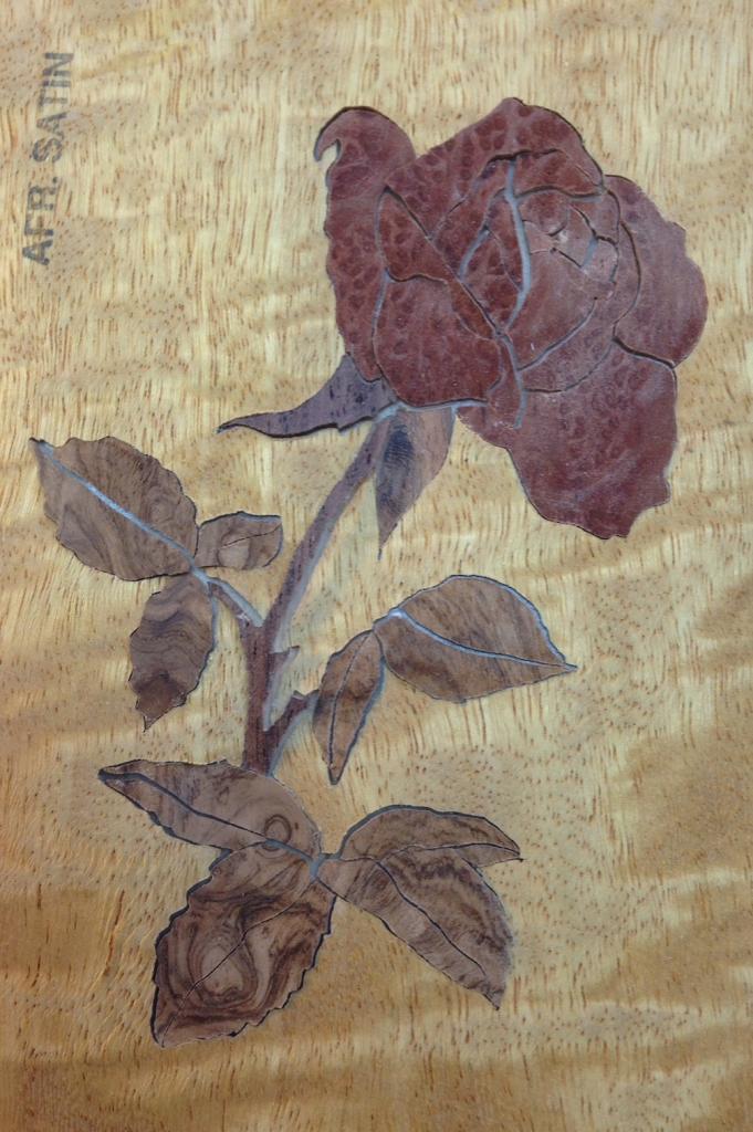 Rose in redwood burl pre-assembled on shelf paper